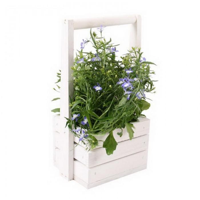 Ящик-кашпо для цветов Aster