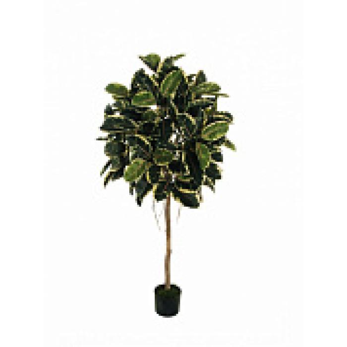 """Искусств.растение """"Каучуковое дерево"""" в горшке, 160 см, пластик, цвет разноцвет"""