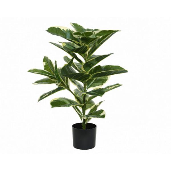 """Искусств.растение """"Каучуковое дерево"""" в горшке, д.61х76 см, пластик, зеленый"""